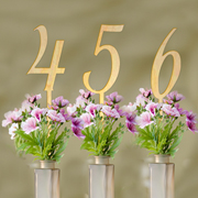 Wood Table Numbers (Set of 6)